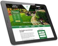 Web Design for AMS Lawn Care