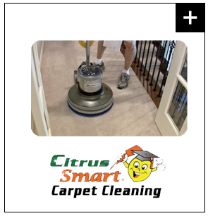 Citrus Smart Carpet Cleaning Franchise